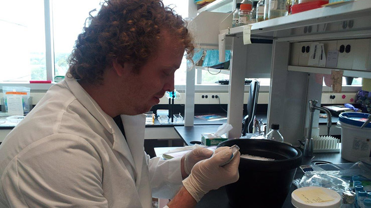 An MSU student wearing a white lab coat studies environmental microbiology using lab equipment.